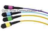 12f MPO-MPO Puente de fibra óptica SM