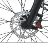 La suspension totale de Montagne Vélo électrique avec la mi-moteur (FR-BDM-20Z)