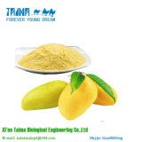 ISO 100% het Natuurlijke Poeder Van uitstekende kwaliteit van de Mango met Goede Smaak