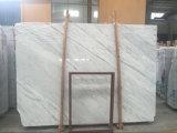 Белый мрамор белизны Cn Statuarfio цвета