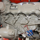 Kleine 5ton Diesel Vorkheftruck met de Chinese Prestaties van de Kosten van de Motor Goede
