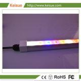 LED Keisue crecer la luz para la producción de huevos con Impermeable IP66.