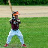 아이들을%s 대중적인 자연적인 나무로 되는 야구 방망이