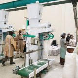 Farinha de trituração do milho que processa e máquina de empacotamento