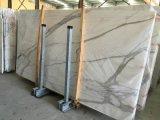 Mármore italiano de mármore branco do branco de Statuarrietto da neve