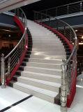 Gebogene Treppe mit Gitter-Entwurfs-Balustrade und Kohlenstoffstahl-Handlauf
