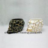 Tipo creativo cerâmico Flowerpot do crânio do projeto