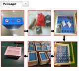 Cellule de batterie solaire professionnelle de batterie du constructeur OEM LiFePO4 3.2V 60ah 100ah