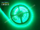 높은 광도를 가진 빛 헥토리터 2835 LED/미터 LED 지구
