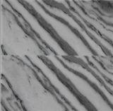 Bianco Fumoの大理石の平板のタイル