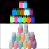 Fulgor brilhante super da forma de 12 cores no pó brilhantemente colorido fluorescente escuro do pó do pigmento luminoso do fulgor do pó