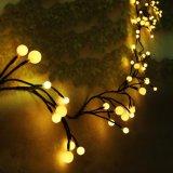 كرة أرضيّة [لد] خيط ضوء, مسيكة [كبّر وير] خيط أضواء لأنّ حديقة فناء, غرفة نوم, عرس, خارجيّة, زخارف داخليّ