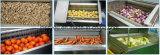 Fécula de mandioca cenouras raiz de gengibre vegetais peeling de lavar a máquina