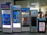 "43"" LCD transparente frigorífico"