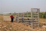 Используется для тяжелого режима работы металлические панели домашнего скота крупного рогатого скота ворота / оптовая торговля крупного рогатого скота во дворе панелей