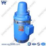 Асинхронный двигатель Пол-Вала серии Vhs (b) вертикальный для глубокого хорошего насоса (WP-1)