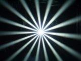 [230و] [7ر] متحرّك رئيسيّة حزمة موجية [أوتدوور كتيفيتي] ضوء