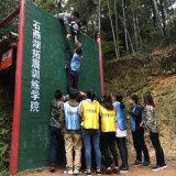 Distributeur automatique de empaquetage de T-shirt d'usine de la Chine