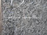 Китай гранитной плиткой строительных материалов (старинной коричневый/tropic коричневый/ Королевский кафе/ стали серого/ Тан Браун/ Каледонии)