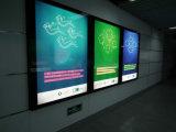 0.48W al aire libre 2xsmd5050 impermeabilizan el módulo del LED con la viruta de Epistar/Sanan para hacer publicidad de muestras/de las cartas/Lightbox del metal