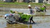Transplanter filipino do arroz de Kubota de 4 fileiras para a venda