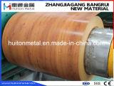 Le bois d'acier galvanisé de Pattern/Galvalume bobine