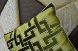 Hoofdkussen van het Fluweel van de Manier van het Kussen van het borduurwerk het Decoratieve (EDM0322)