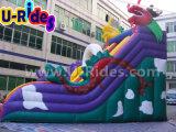 公園のための巨大なドラゴンの膨脹可能なスライド