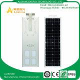 Complet/a intégré le réverbère extérieur imperméable à l'eau de l'éclairage solaire DEL