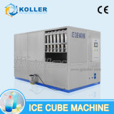 5000kg / Day Whiskey Ice Cube Machine Manufacturing Factory
