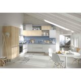 Het meubilair handvat-Vrije Moderne Houten Keukenkast van het huis voor Flat