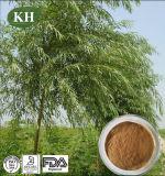 Qualitäts-weiße Weide-Barke-Auszug (Salicin 15%, 98%)