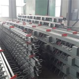 Ausdehnungsverbindung für Brücke mit der Largement Bewegung hergestellt in China