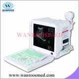 Berufsscanner des ultraschall-Us360 mit mit hoher Schreibdichtefühler