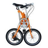 16 بوصة يتيح يطوي درّاجة/متغيّر سرعة درّاجة/وحيدة سرعة درّاجة/[ألومينوم لّوي] إطار/مدينة درّاجة/[لونغ ليف] [ليثيوم بتّري] درّاجة