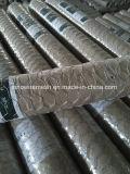 Sailin Caldo-Ha tuffato la rete metallica esagonale galvanizzata del pollo