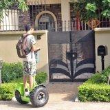 individu 300cc équilibrant le scooter électrique de 2 roues pour l'handicapé