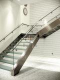 Escaleras de la escalera de cristal recta/del acero inoxidable