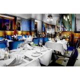 贅沢の100%年の綿のレストランのホテルの平野のサテンの夕食ナプキン