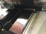 Industrielle CNC-vertikale Fräsmaschine für das Form-Aufbereiten (EV1060M)