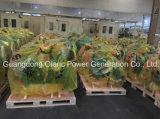 Fornitore superiore dell'OEM di Cummins di generatore di riserva 100kVA