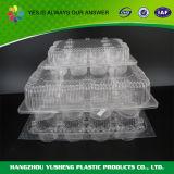 Kuchen-Bäckerei-Blasen-Plastikverpackungs-Behälter