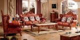 Sofà del salone della mobilia antica con la mobilia del sofà del cuoio genuino