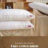 Der Großhandelsfabrik-Verkauf, der Pillow Standard ist unten, für Häuschen