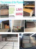 シラカバの合板のポプラのコアBB/CC等級の食器棚の家具E1 18mm