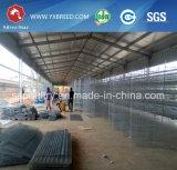 La meilleure qualité de Wire Mesh Cage pour ferme de la couche de poulet au Kenya