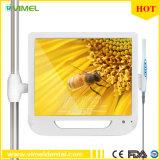 Instrument dentaire 5.0mage Endoscope Moniteur LCD 17 pouces USB caméra intra-oral