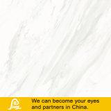 Heißer Verkaufs-weiße Porzellan-Marmor-Stein-Fliese Carrara 600X600mm