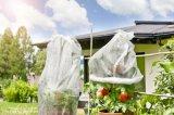 De PP Nonwoven Fabric para Cobertura Vegetal