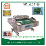 Empacotador elétrico do vácuo da máquina e do alimento de embalagem do vácuo
